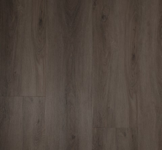 Gelasta Dryback PVC Pure River Oak Pearl Grey 8405 € 26.95